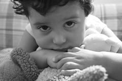 felix (Analía Acerbo Arte) Tags: blancoynegro felix niño fili peluches dulzura