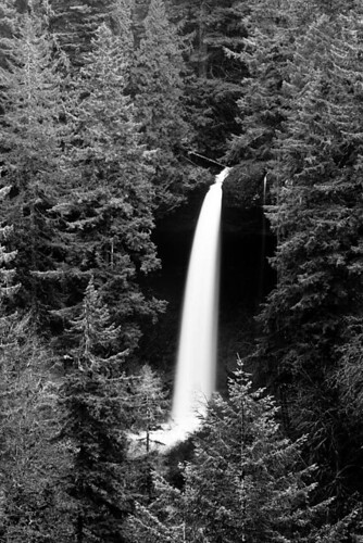 Falling Down - North Falls at Silver Falls State Park in Oregon