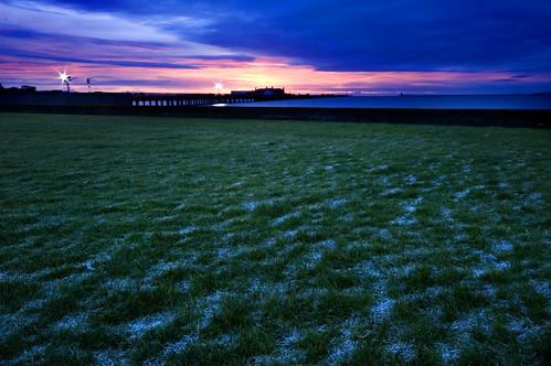 Frozen Lawn at Sunrise