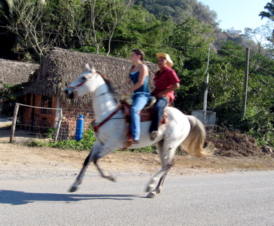 Galloping horse, La Manzanilla rodeo