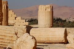 Palmyra (twiga_swala) Tags: city site ancient ruins desert theatre roman columns syria archaeological palmyra tombs palmira colonnade syrian syrie aramaic palmyre tadmor  tadmur decumanus tudmur