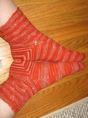 serendipity socks2