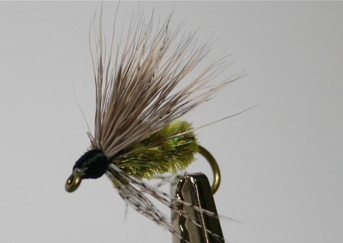 Green McKenzie Caddis Wet