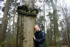 Good Friends #1 (just.Luc) Tags: wood trees sky tree me leaves rain self leaf spring woods friend friendship belgium belgique touch belgië trunk serene luc gaia belgica treehugger treehugging touching belgien tactile vlaamsbrabant oudheverlee