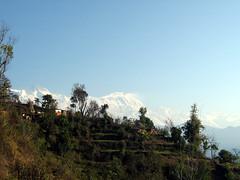 Nature's true spirit (Basu Dahal) Tags: sarangkot
