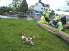 17.5.9 Clarion Barcombe picnic 016