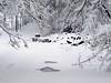 """Volto di donna.... ("""" paolo ammannati """") Tags: neve casentino fotoconneve"""
