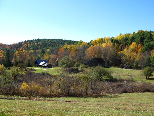 Farm Foliage 6