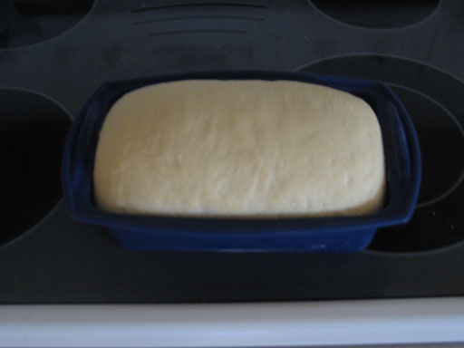 Breadmaking #14: After One Hour