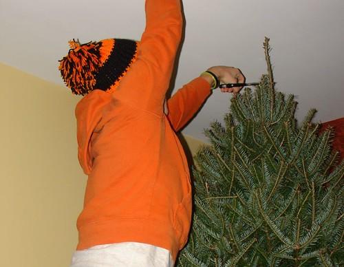Trim the Christmas tree
