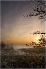 QueendownMistySunRise (lightpainter_album) Tags: sun mist tree field fog clouds sunrise fence valley daybreak field corn sunrise misty queendown