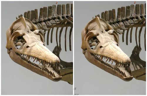 3D Dinosaur 05