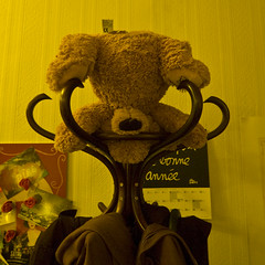 Le monde  l'envers (janbat) Tags: paris color d50 nikon tokina teddybear f4 couleur 1224 ours peluche janbat jbaudebert chezclara