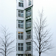 Tris (DanielaNobili) Tags: trees windows winter urban white house berlin lines alberi nikon walls onwhite finestre berlino 500x500 mywinners abigfave superbmasterpiece diamondclassphotographer megashot betterthangood danielanob