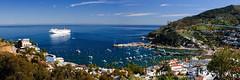 Avalon Bay Panorama (sfortier) Tags: marina bay catalinaisland cruiseship avalon infocruise08