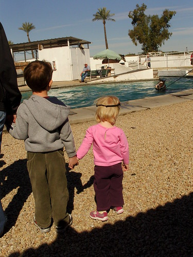 moment 18: holding hands, watching horses swim...