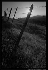Fence Sunburst (tompost) Tags: blackandwhite fence photo spring image hills barbedwire sunburst landscapephotography tompost