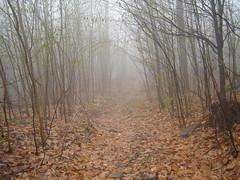 Spruce Mountain 052 (A Keeper's Jackpot) Tags: hiking adirondacks adk firetower rockpiles sprucemountain