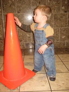 Will & the cone