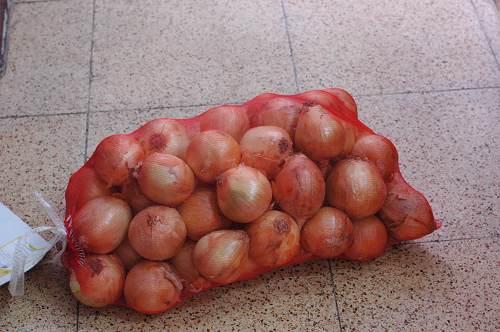 屏東環盟的洋蔥