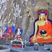Tibet-5363 - Shakyamuni Buddha