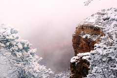 Frost and Mists (Andrew Aliferis) Tags: andrew andy aga aliferis grand canyon az arizona nikon d300s winter snow ice mist fog colors