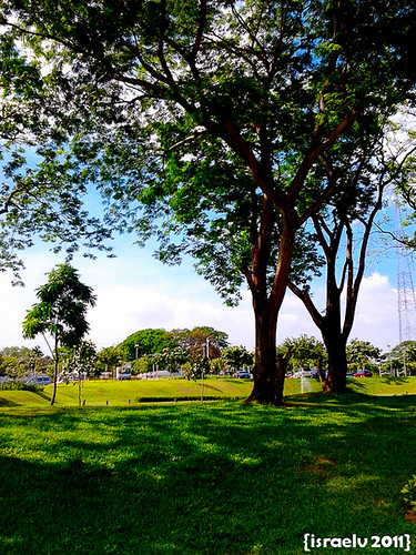 DAY 126 - Greens amongst QC's Concrete Jungle by israelv