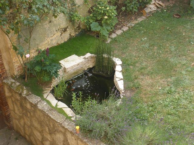 mon p'tit bassin dans mon p'tit jardin - Page 2 5821723239_65c7724f24_z