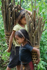 Children collecting wood (Noel Molony) Tags: children concernstaff educationonhealth family hamkongvillage haumeuangdistrict health healthcentre monvillage pakhataivillage pasortvillage rice salongvillage salorvillage samhouay sopkhamvillage stories tarkaivillage thathvillage waterpumps