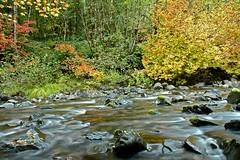 Quartzville Creek (Nick Boren Photography) Tags: autumn mountains oregon creek western cascade quartzville