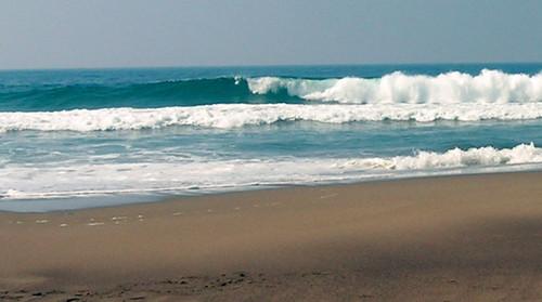 Seco surf