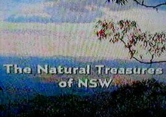 The Natural Treasures of NSW