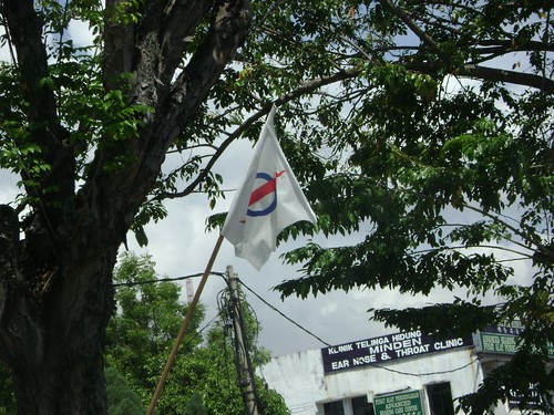 DAP Flag
