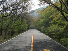 road from Yufuin