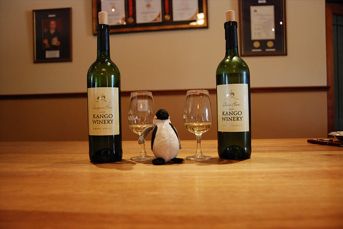 Mini Wolfgang visits Kango Winery!