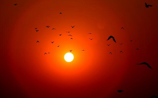 a trip to sun...