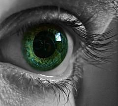 Eye Wonder?