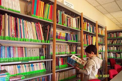 Egas na biblioteca
