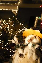Christmas Lights in Eucalyptus Ave., San Carlos, CA