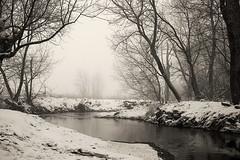 otter creek (GVS Photo) Tags: nature creek strobist bestnaturetnc07