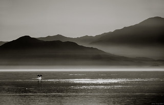 A quiet afternoon at Salton Sea