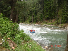 RAFTING, River Rafting in Kashmir. (gsb_viva) Tags: stream sailing superb unique class rafting boating kashmir riverrafting roughwater shaani beautifulcapture superbshot holidaysinindia superbindia misticindia gsbviva uniqueclass superbclass