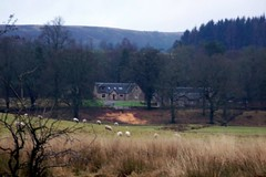 Callander (swiftymags) Tags: trees houses birds scotland rivers farms scenics callander notjustlandscapes