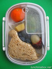 Dinosaur sandwich bento lunch for preschooler (lid closed)