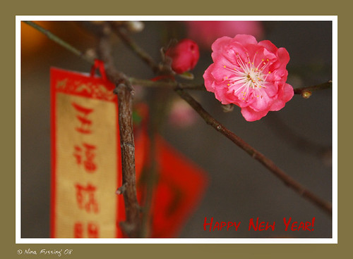 New Year Blossom