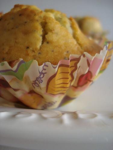 haşhaşlı muffin 014
