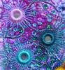Shisha 5 detail (Karen Cattoire) Tags: original abstract art shisha handmade embroidery originalart creation fabric fiberart beading textileart tissu abstrait textiledart karencattoire fibretextile arttexilte