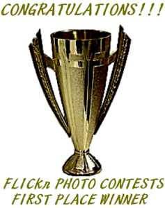 FPC Gold Trophy Award<br>