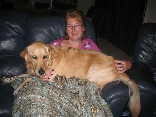 Rosie the lap dog