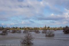 Good morning Yuba City (Vurnman) Tags: california norcal yubacounty river featherriver levee flood